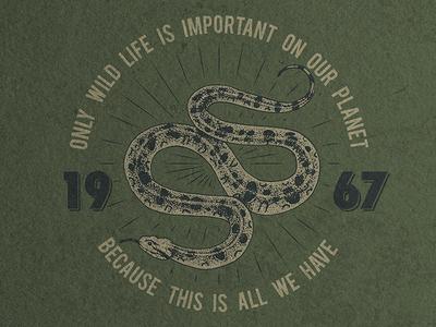 t-shirt print with snake / custom vintage design