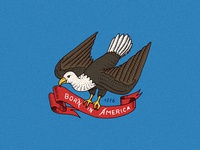 American badge / Bald eagle. Born in USA