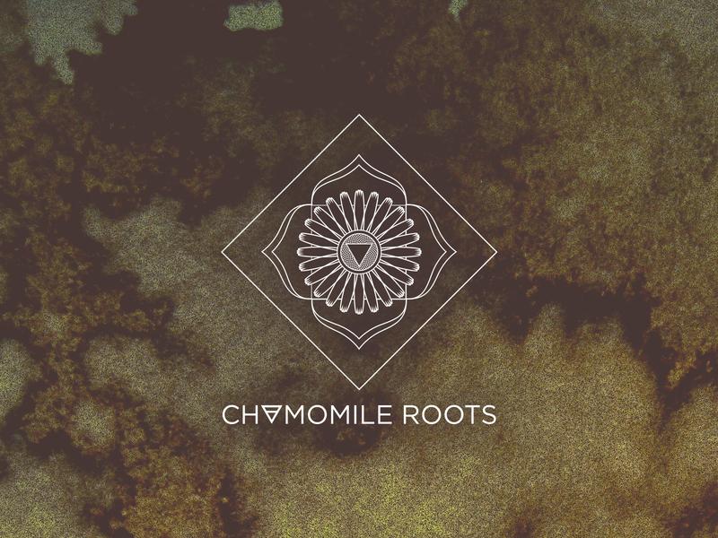 Chamomile Roots logo design chamomile minimal branding illustration logo design logo