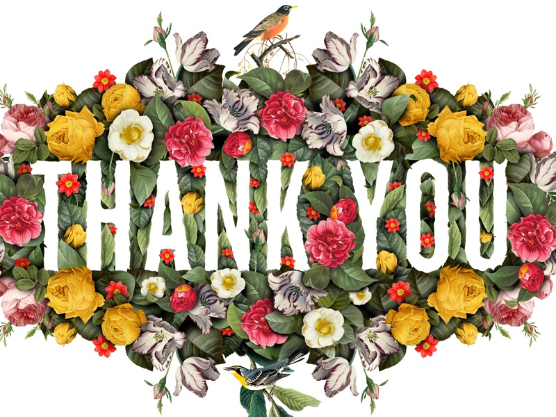 Thank You botanical digital negative space flowers collage typography lettering type floral