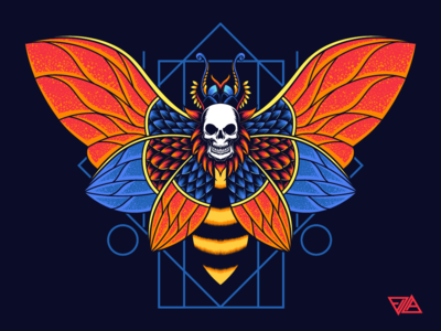 Moth Skull ornament moth butterfly drawing poster sticker merchandise skull apparel branding logo design tshirt artwork animal mask vector illustration
