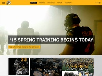 Tiger cats   homepage
