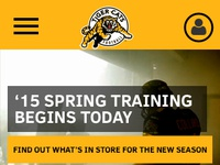 Tiger cats   mobile