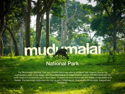 Mudhumalai National Park