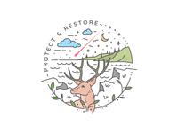 Protect & Restore