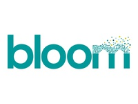 Identity for bloom digital - 2013
