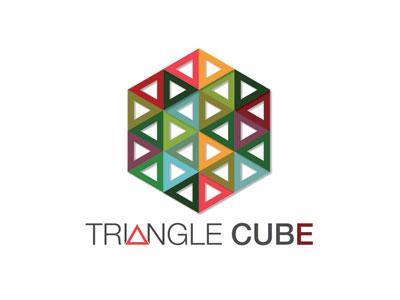 Triangle Cube graphic design vector art identity branding logos