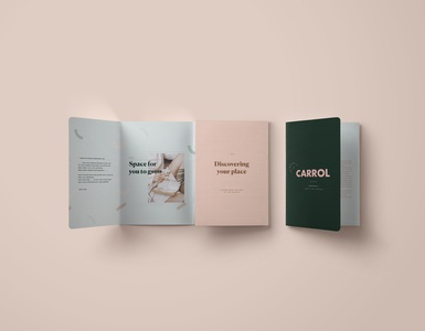 Carrol Brochure