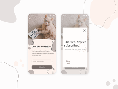 Cat Shelter App cat mobile kitten daily ui subscribe minimal design ui
