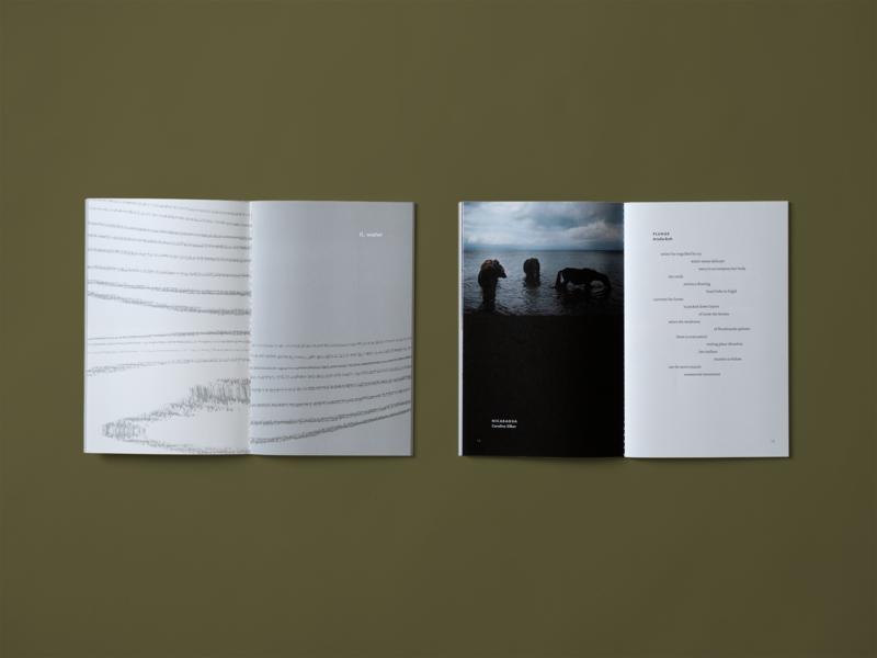 Harvard Art Anthology — Water Section education book art poetry saddle stitch illustration climate change print anthology