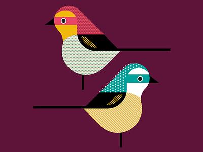 Little birds colorfully birds