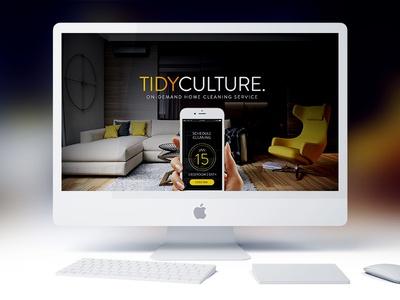 Tidy Culture product page theme onepage landing cleaning