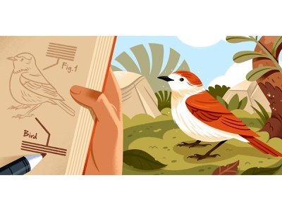 What is Creative Nonfiction? landscape editorial illustration writing bird editorial illustration