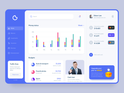 Financial app UI design dashboard web design application financial budget expences debit credit cards patterns aethetic finaces bank financial app ux ui