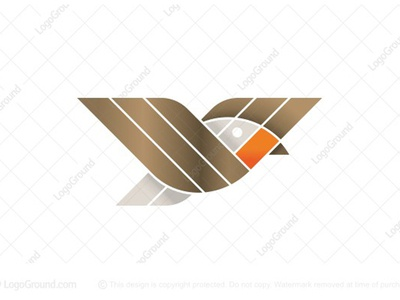 Little Robin Bird Logo