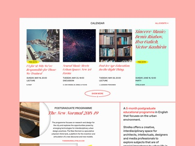 Strelka Site Redesign Concept