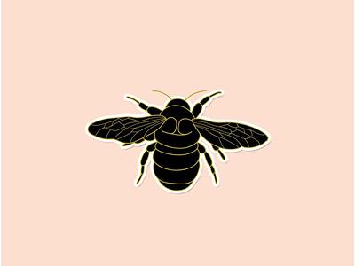 Citizen Bee adobeillustator wacom design vector illustrator illustration wasp bumblebee bee