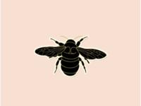Citizen Bee