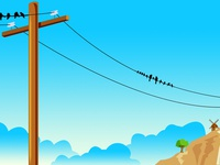 Electricity Pole Birds  2