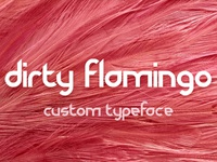 Dirty Flamingo ~ Custom Typeface