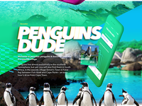 Penguins Dude!