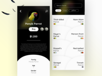 Parrot Profile Page