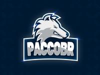 PaccoBR - Gaming Logo