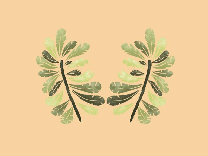 Twin ferns drawing fern procreate