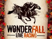 WonderFALL Live Racing