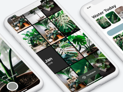Potted - Photo Library potted photo gallery wip app reminder water plants ux ui