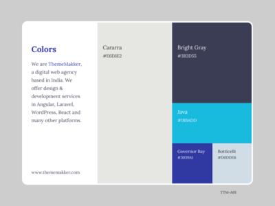 Color Pallete TTM-A01 colorful web colors thememakker figmadesign figma illustration dribbble colors flatcolor colorpalette color