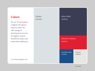 Color Pallete TTM-A02 ux admin dashboard typography thememakker branding illustration colors flatcolor ui vector