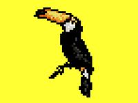 Pixel exotic bird