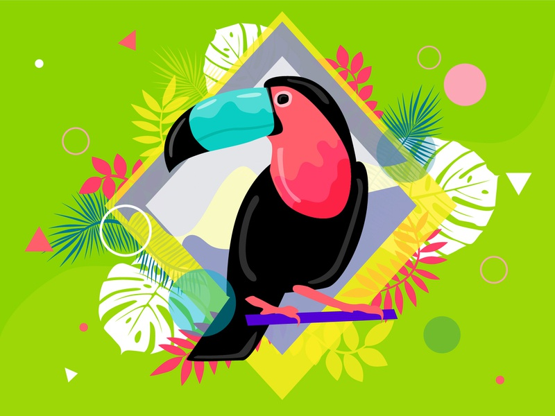 Tropical bird leaves tropical leaves pelicans tropic tropical design vector animal cartoon simple character concept illustration flat