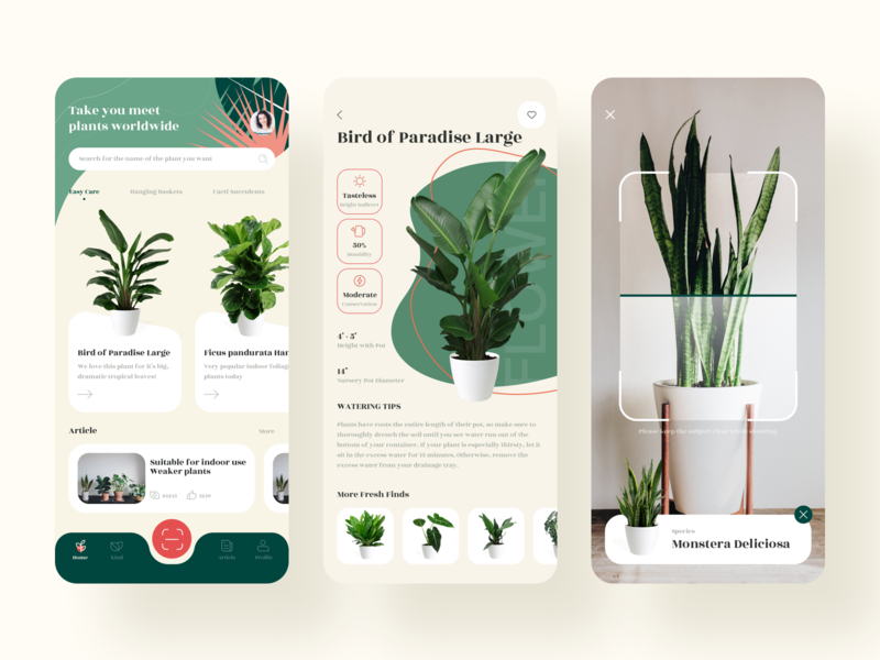 Identify Plants App ar recognition ar recognition plant illustration design branding ui app