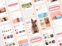 Pet app pet pet app banner ui branding illustration design