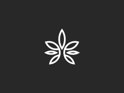 Cannabis leaves logo design
