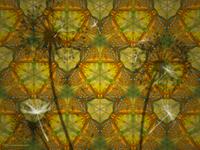 Kaleidoscope of Life