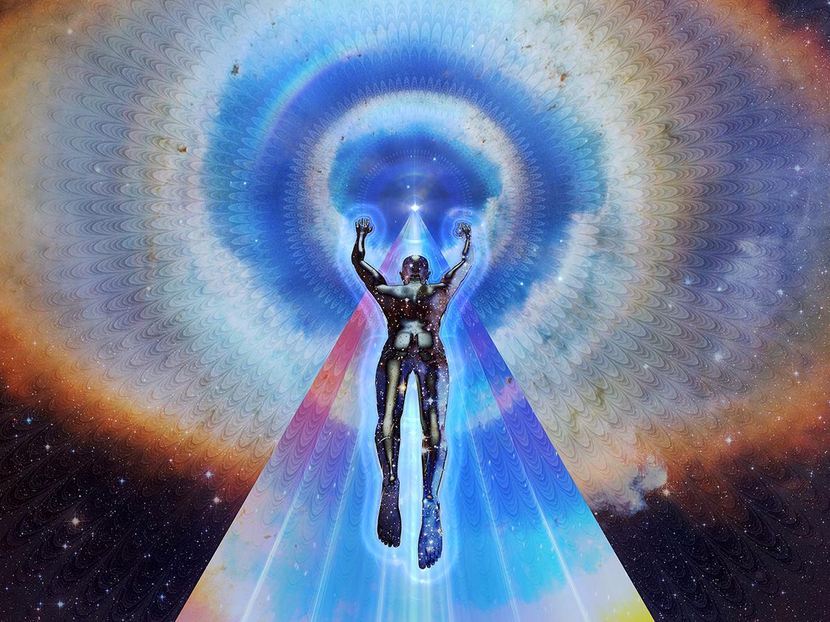 Transcendence   Movie fanart   fanart.tv   Transcendence Dvd Cover Art