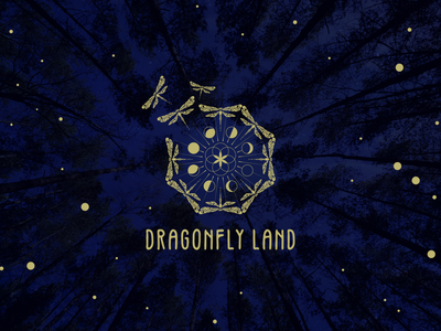 Dragonfly Land pagan firebugs dreamy moon phases wicca dragonfly dragonflies logodesign logo trippy design dream surreal magic
