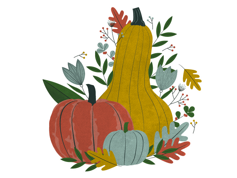 Fall Illustration leaves vegetables produce food illustration leaf foliage squash pumpkins gourds autumn fall