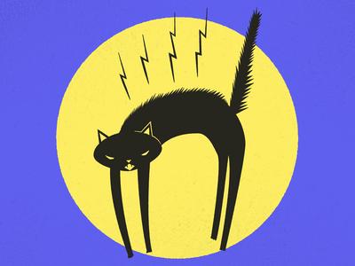 Day 3: Black Cat
