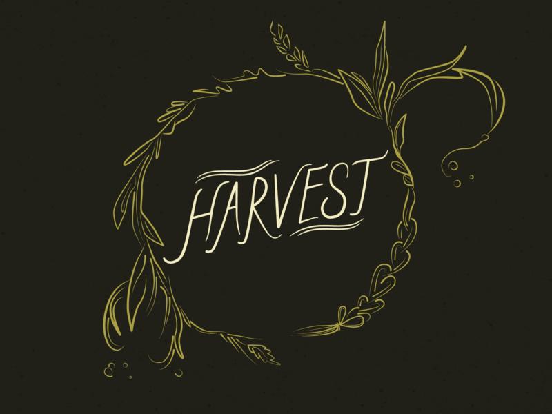 Harvest design wreath plants nature straw harvest handdrawnlettering handdrawn branding