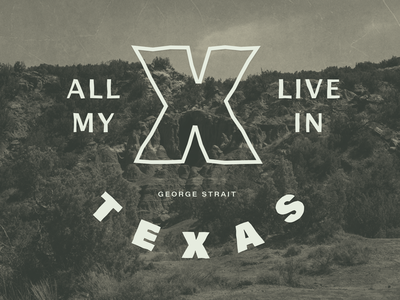 All My Exes Live In Texas type country texas typography