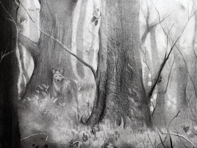Shola Forest forest charcoal graphite illustration art
