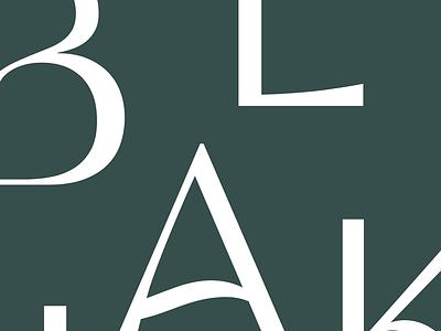 Custom Type WIP — by Studio Gangplank progress typography