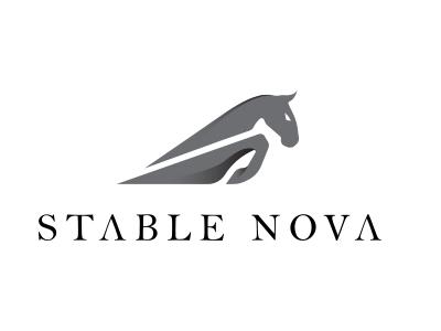 Stable Nova Logo winner