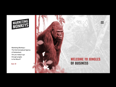 Website Concept for Marketing Agency, Switzerland