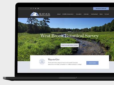 Seatuck Website Design website design ux ui design