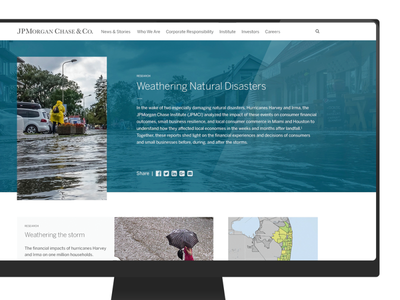 JPMorgan Chase Web Design web design ux ui style guide data visulization